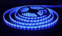 LED 3528 Blue 60 12V без силикона (80)