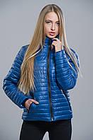 Женская синяя куртка демисезонная №5 WW 42-48 размеры