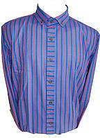 Мужская рубашка длинный рукав