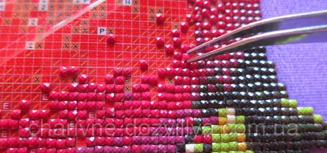 Алмазная вышивка мозаика по фото! Подарки! | ВКонтакте
