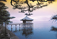 Фотообои: Медитация, Дзен, 366х254 см