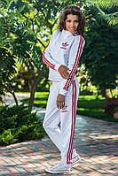 Спортивный костюм № 613313 Двунитка
