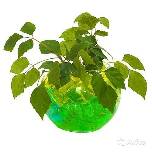 Гидрогель для цветов АкваГрунт Seven Color ...: moypodarok.com.ua/p118951570-gidrogel-dlya-tsvetov.html