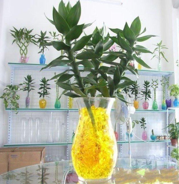 FLORS  Керамические горшки для цветов кашпо для цветов
