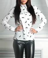 Женская шифоновая блузка, рубашка с модным принтом, до 48 размера