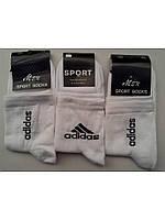 Носки мужские Sport Socks (белые) (В.И.Т)