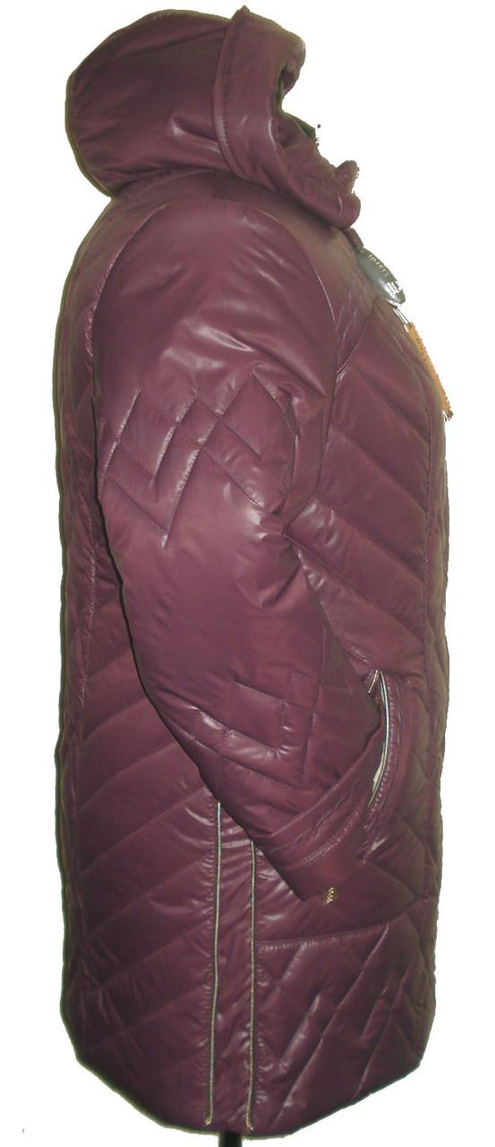 Куртки керри зима фото