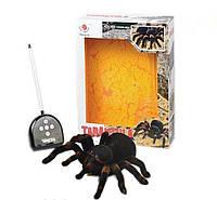 Паук Тарантул радиоуправляемая игрушка + пульт Tarantula