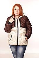 Куртка Трансформер стежка №1 ( 5цветов) 50-62, фото 1