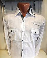 Рубашка мужская с длинным рукавом белая с красивой отделкой