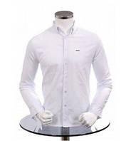 Рубашка мужская длин/рукав белая Турция