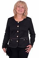 Отличный женский пиджак с длинным рукавом