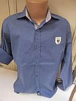 Детская рубашка синяя крапочка ст