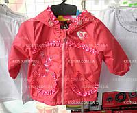 Демисезонная куртка ветровка для девочки