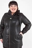 Куртка женская кожзам с пряжкой чёрная