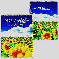 "Обложка на паспорт ""Моя любов - Україна"""