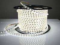 LED лента 5050 белые диоды.
