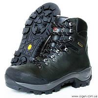 Треккинговые ботинки Garmont Picos Original GTX, размер EUR  38,  48