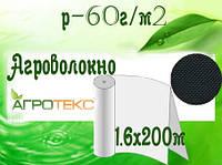 Агроволокно 60 UV черный перфор. (1,6х200м) (Агротекс)