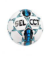 Мяч футбольный Select Numero10 2015