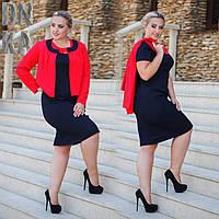 Женский стильный костюм-двойка (платье + жакет) большого размера