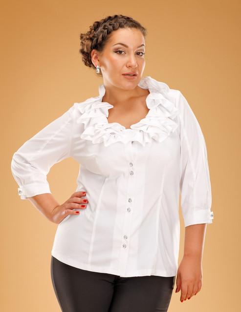 Белые Блузки Больших Размеров Купить В Спб