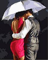 "Раскраска по номерам ""Романтика под зонтом Худ МакНейл Ричард"""