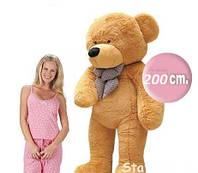 Большой Мишка Тедди 200 см