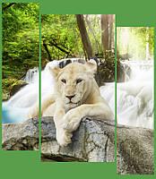 "Модульная картина ""Белый лев"""