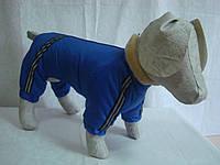 Комбинезон для собаки с мехом