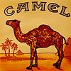 "Табачный ароматизатор ""Camel"" 10 мл."