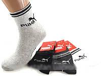 Мужские носки Puma