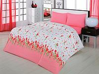 Набор постельного белья 200х220 ZAMBAK Ranforce  Yasmin с тюльпанами
