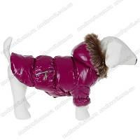 Курточка для собаки сиреневая на флисе и синтапоне