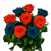 Букет из 9 долгосвежих роз FLORICH АЛЫЙ и СИНИЙ 5 карат короткий стебель