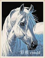 """Алмазная вышивка набор """"Белая лошадь"""""""