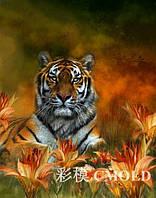"""Алмазная мозаика """"Тигр отдыхает среди лилий"""""""