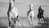 """Алмазная вышивка """"Дикие лошади несутся по прерии"""""""