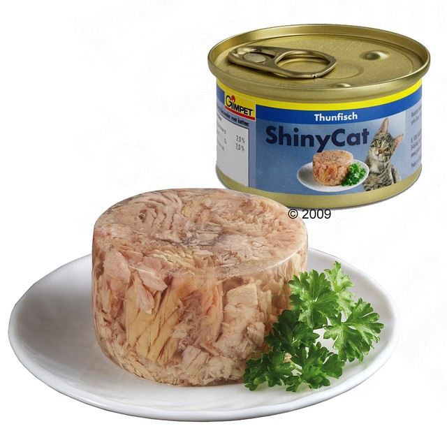 Gimpet ShinyCat