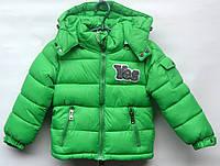 Демисезонная куртка для мальчика 3-6 лет модель - 2813