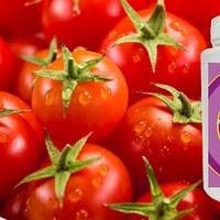 Альгинатная глико  маска с томатом (anti-age эффект) ALG & SPA (Алг енд Спа) Франция, 200г