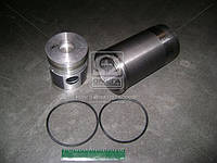 Гильзо-комплект Д 240 (ГП+Кольца+Палец) АГРО (гр.С) П/К (МД Кострома), 240-1000108-С