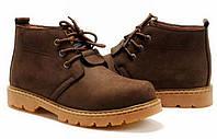 Мужские/женские зимние ботинки CAT Caterpillar (cat_pill_02)
