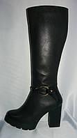 Модельные женские зимние кожаные сапоги на каблуке с лаковой пяткой