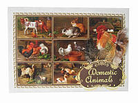 Почтовая открытка Домашние животные (Патриотические открытки)