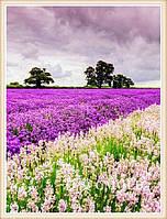 """Набор для алмазной мозаики """"Фиолетовое поле"""""""