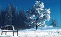 """Набор для рисования камнями """"Одинокая лавка в зимнем лесу"""""""