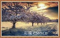 """Набор для рисования камнями """"Зимний сад"""""""