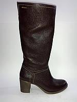 Кожаные женские евро зимние модные удобные стильные сапоги Gama