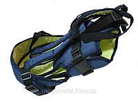 Рюкзак кенгуру переноска 3 положения Womar Blue.D